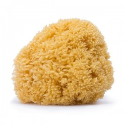 Suavinex Natural Family Sponge